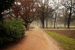 Luzanky Park
