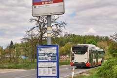 Brno Panska Licha