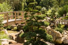 Zoo Zlin Zen Garden Japanese