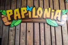202008_Papilonia-7