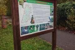 Podkomorske forest