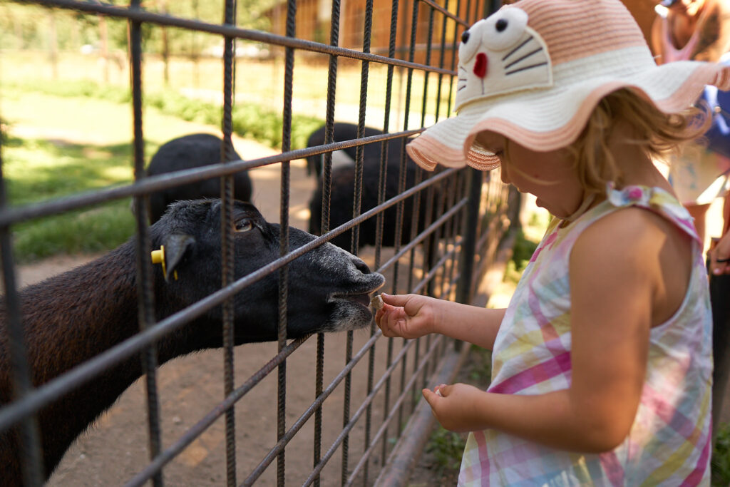 ZOO visit with kids