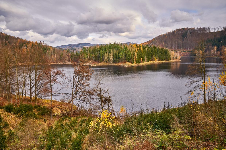 Vir reservoir