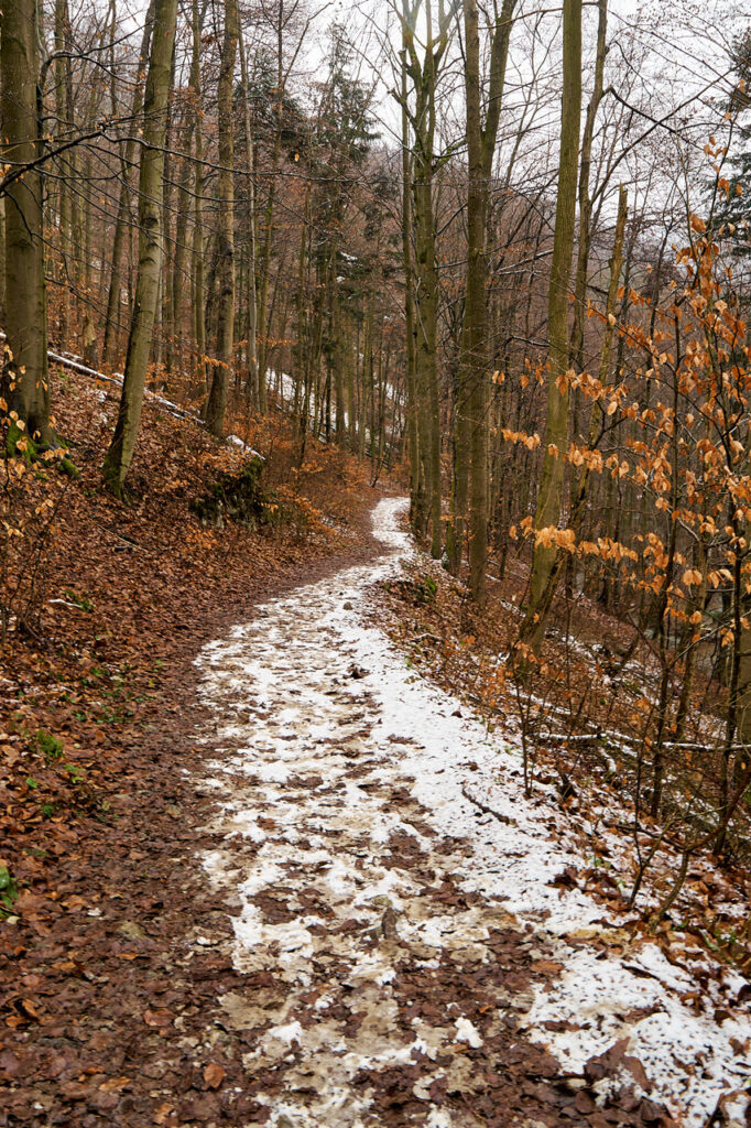 Blue path between Jachymka cave and old ironworks