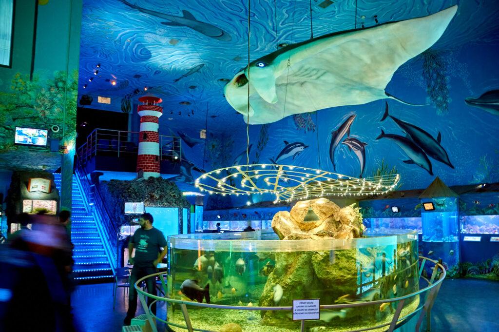 Underwater world Prague